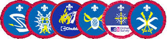 Scout Activity Badges